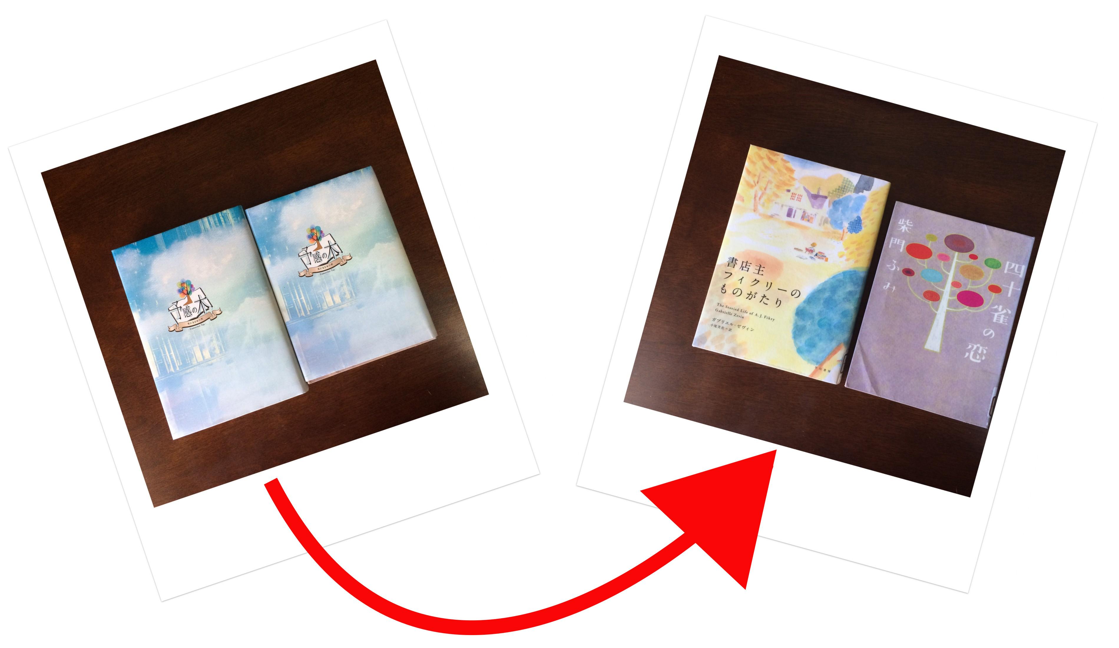 江戸川区立東部図書館 予感の木 貸出本